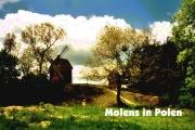 05b polen molens