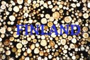 11dFINLAND